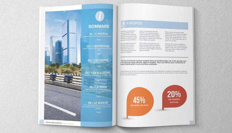 Rapport D Activité Designer Graphique à Orléans
